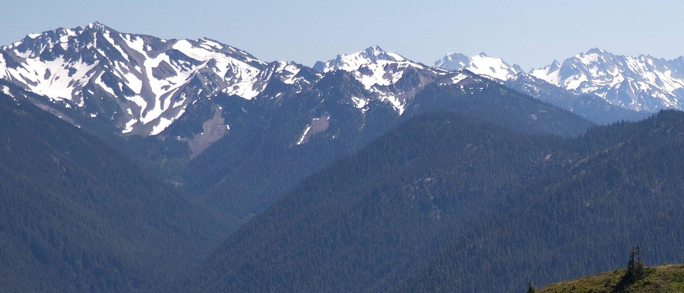 Mf Snow Mount